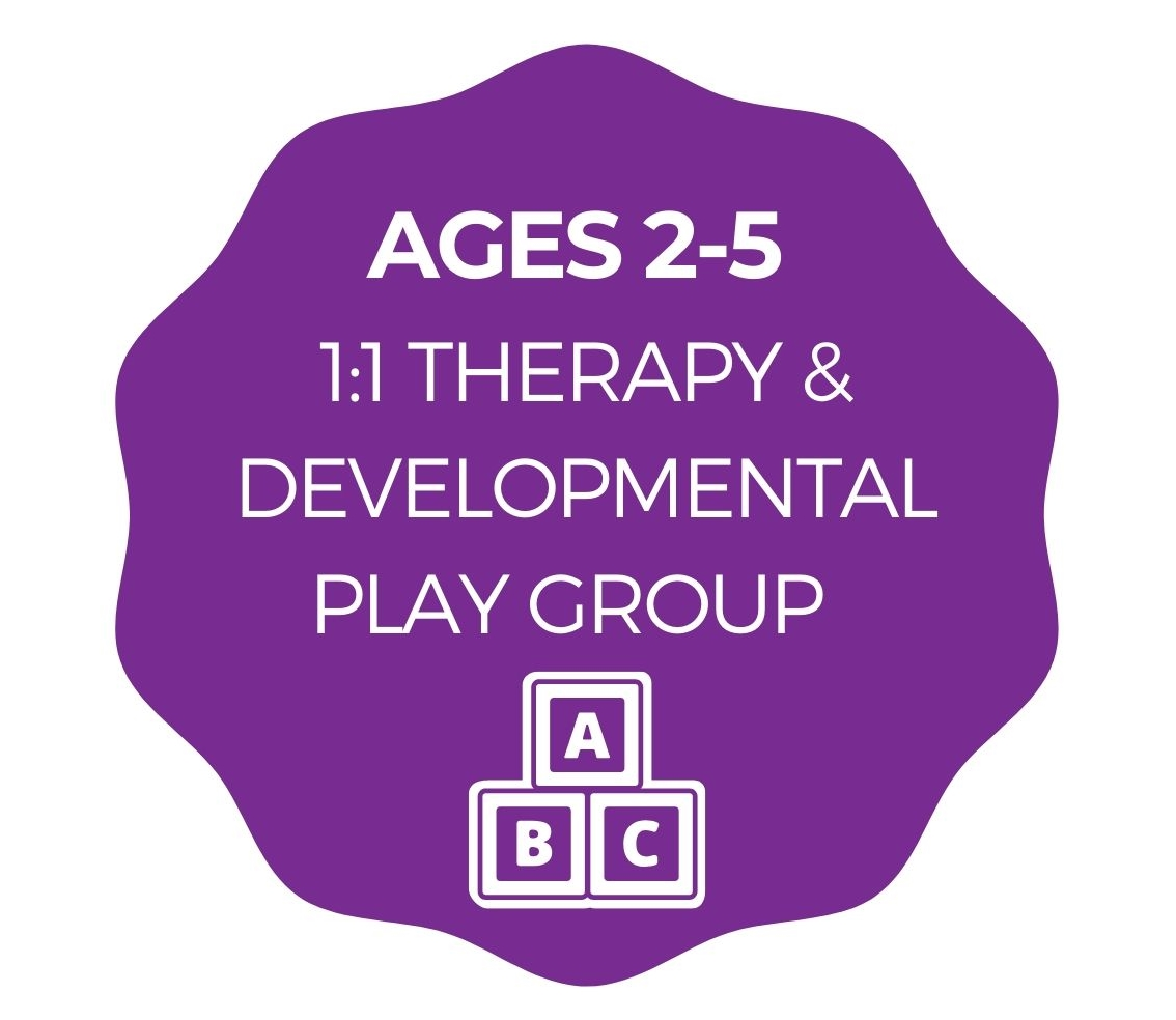 Ages 2-5 1:1 Therapy & Developmental Play Group
